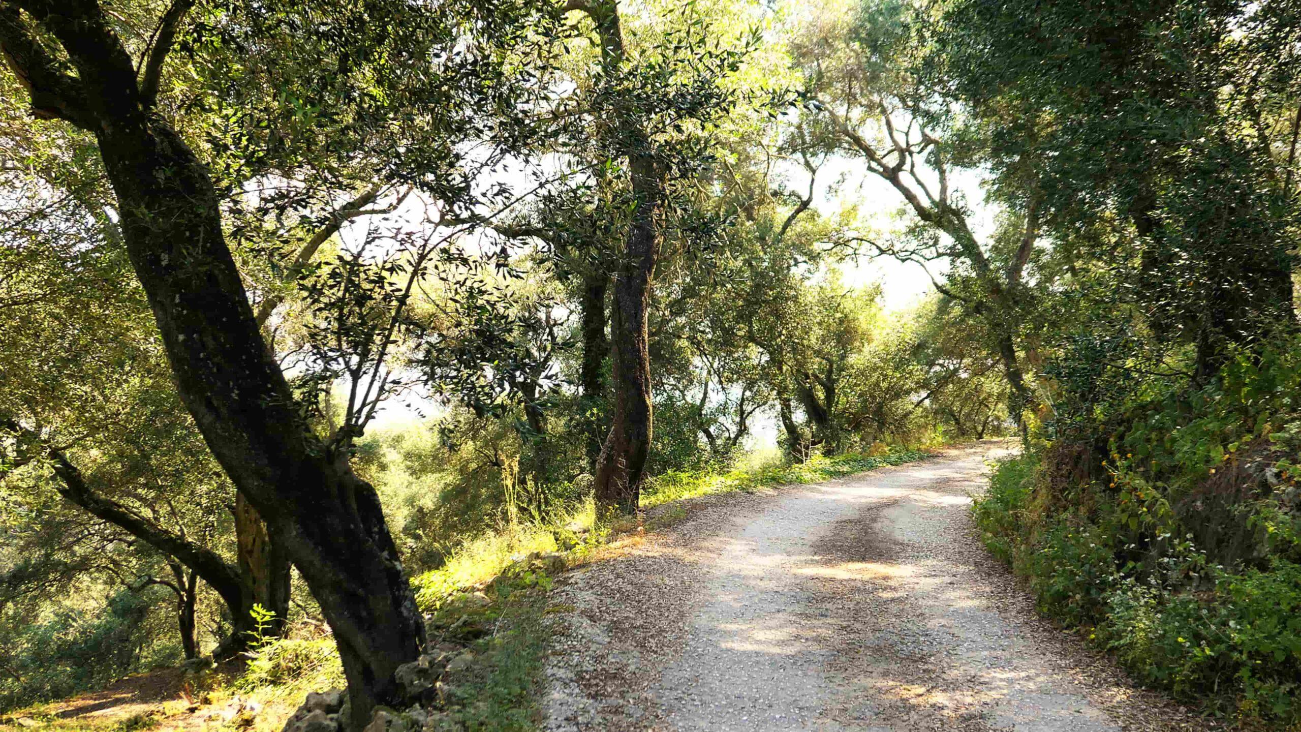 Corfu trail wandelen