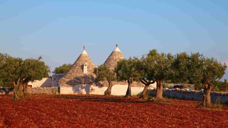 Puglia olijfolie proeven trulli