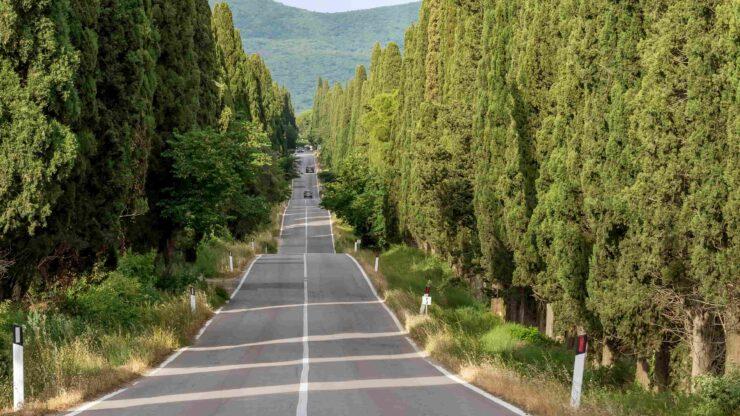 Toscane Bolgheri