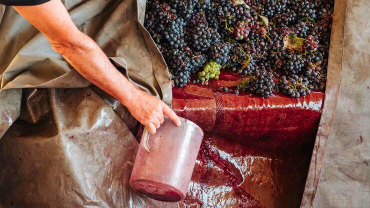 Italie wijn Puglia