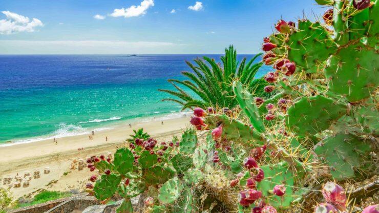 Fuerteventura strand Esquinzo
