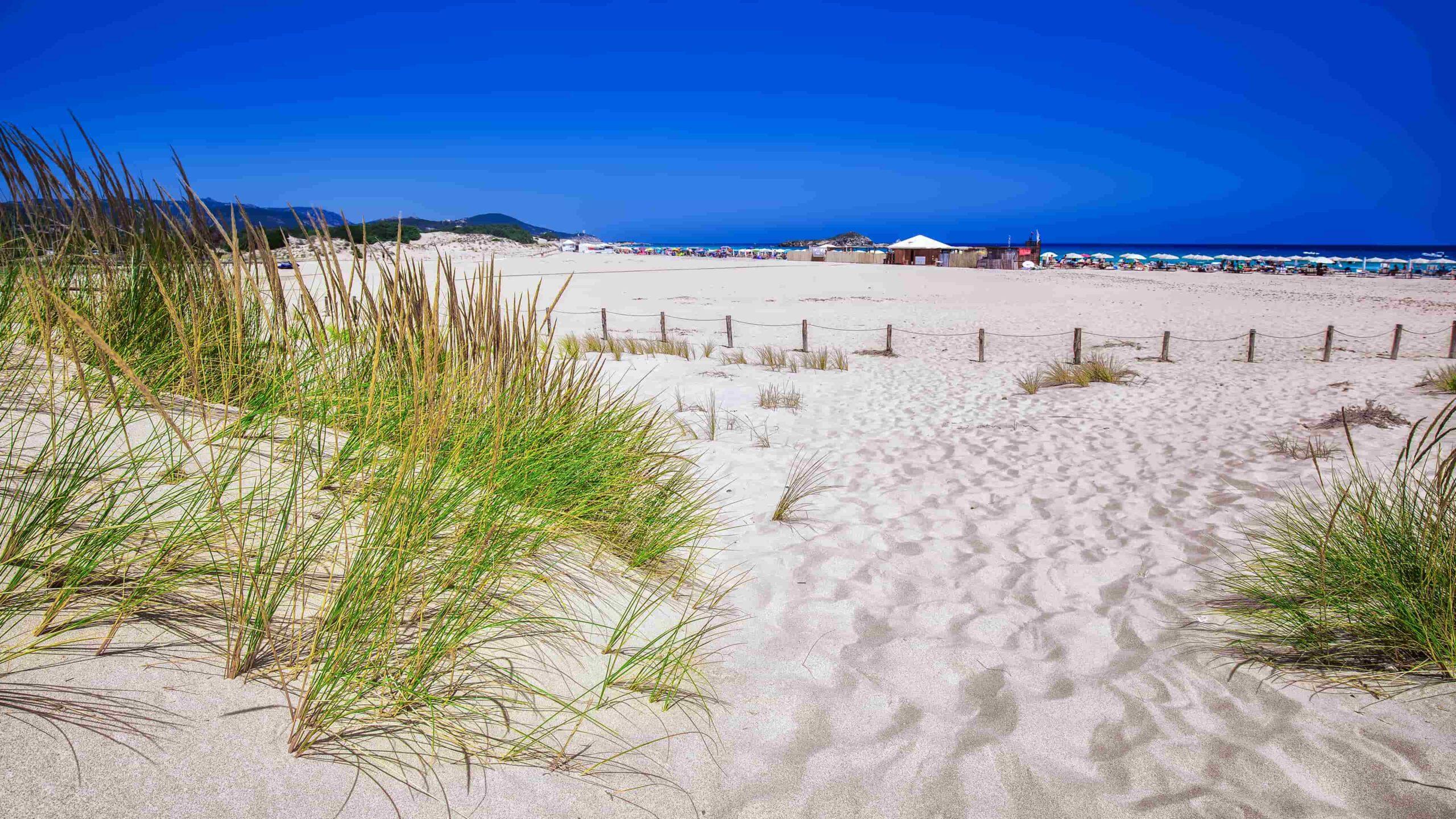 Sardinië strand Cala Cipolla