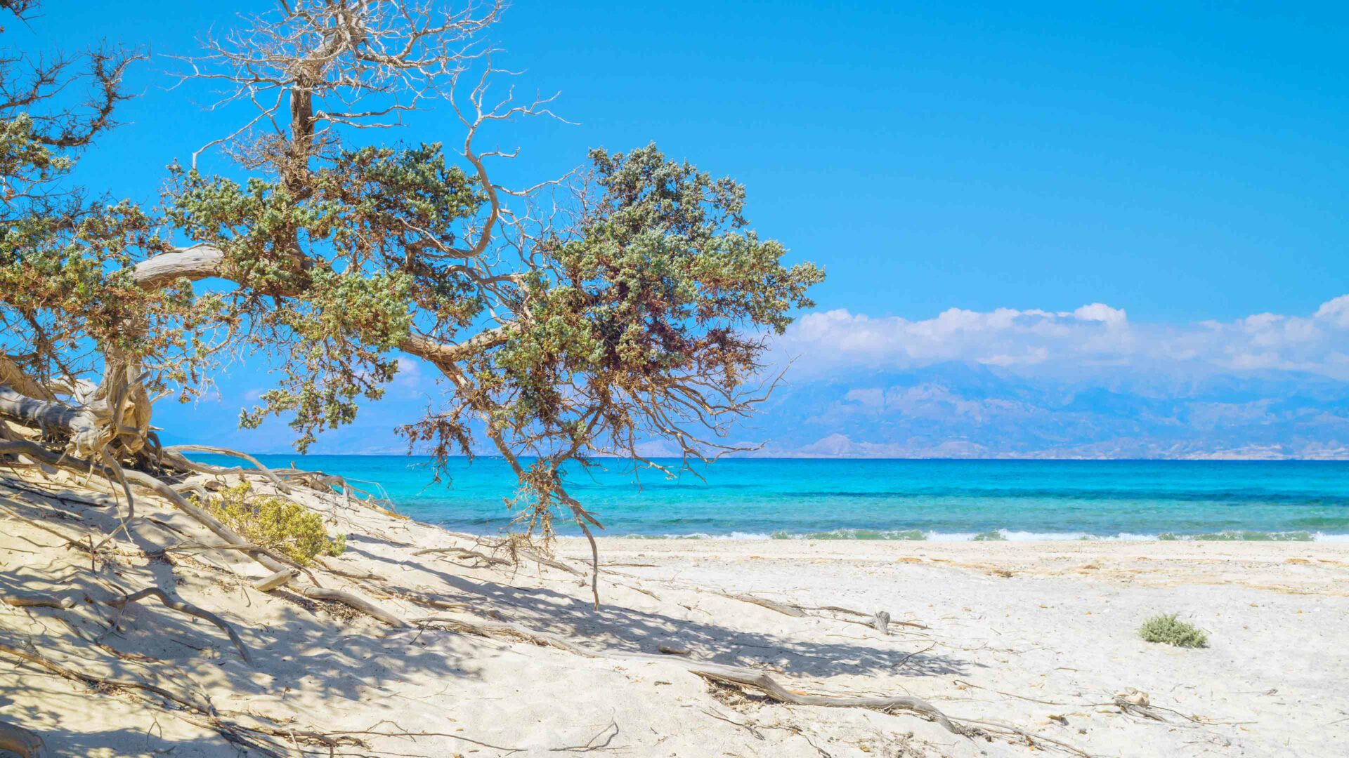 Kreta strand Chrissi beach
